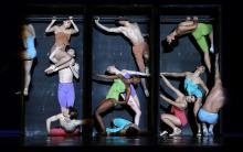 Testen voor toegang: Junior Company - Colours of ballet