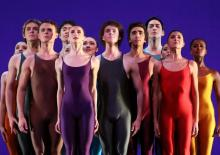 Junior Company: Largo
