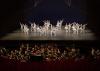 Dutch Ballet Orchestra